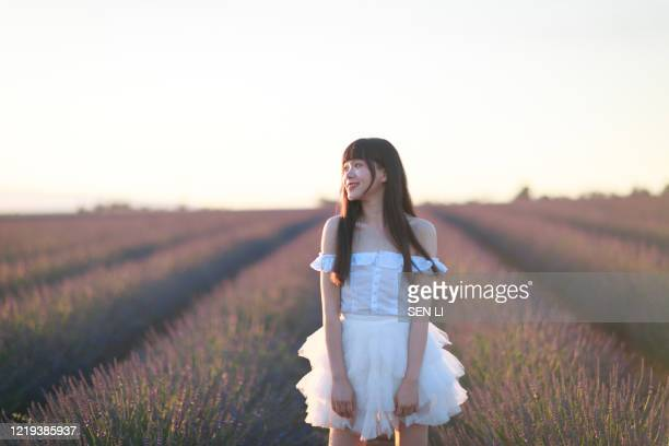 young asian woman in white dress walking in lavender field around valensole, provence, france - 白のドレス ストックフォトと画像