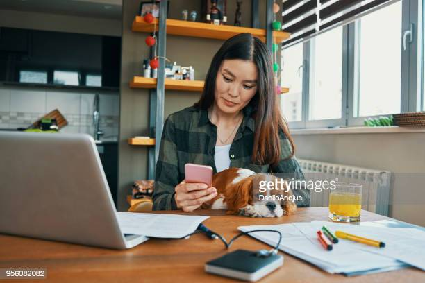 young asian woman working from home - serbia stock pictures, royalty-free photos & images