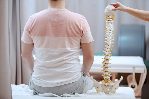 Young attractive female doctor holding spine model and truing to realize where is patient's painful place. 1147994108