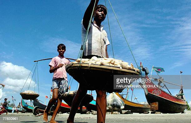 Young Bangladeshi fishermen carry their catch of the day to a market from the beach in Teknaf southern most tip of Bangladesh bordering Myanmar 11...