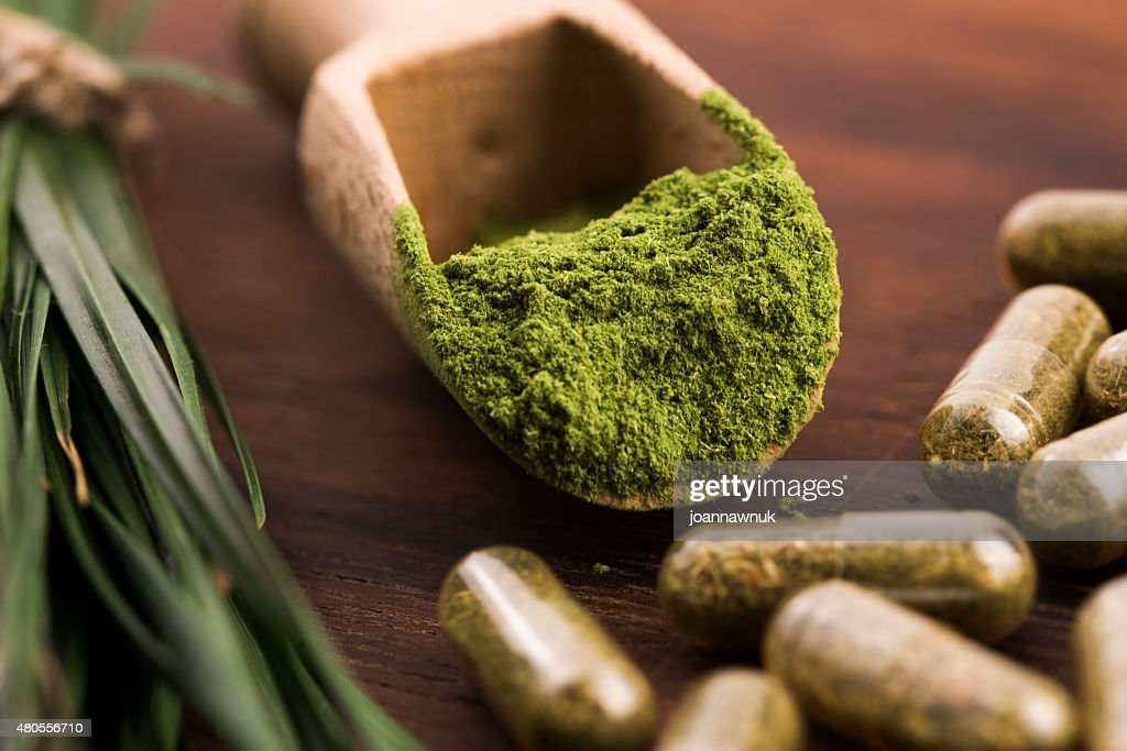 Young barley grass. Detox superfood. : Stock Photo