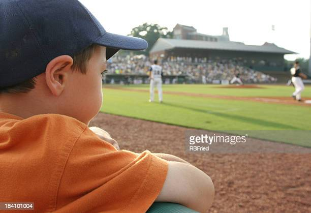 Young baseball fan
