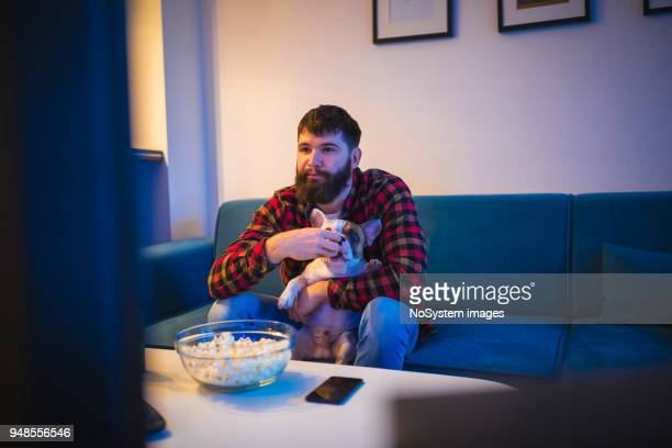 young bearded men watching sport on television with his dog - man cave stock pictures, royalty-free photos & images