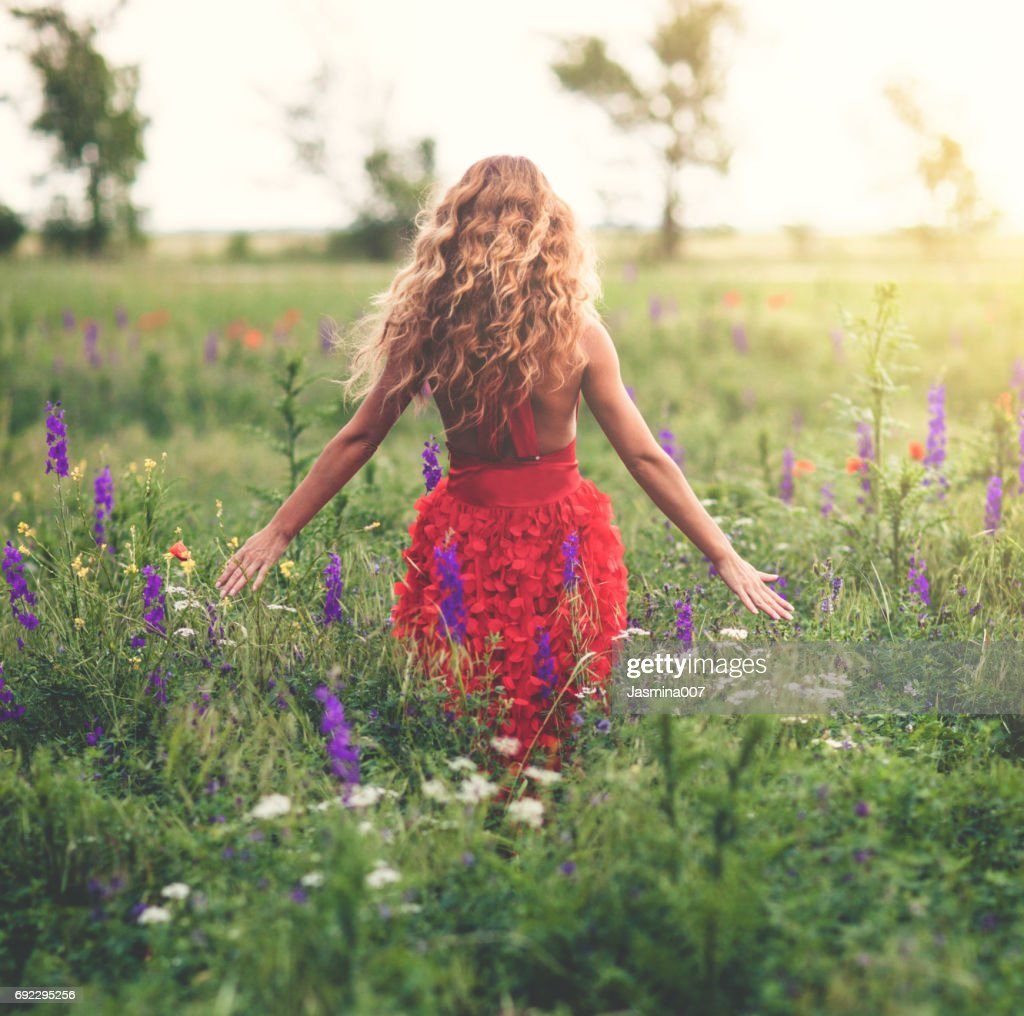Young beautiful woman in poppy field : Stock Photo