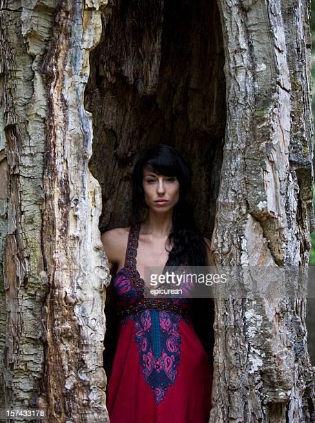 Junge schöne Frau in einem Baum