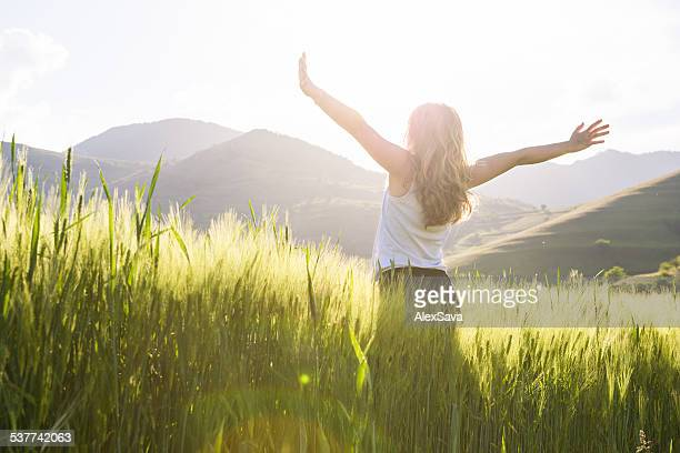 young beautiful woman with hands raised in the wheat field - welzijn stockfoto's en -beelden