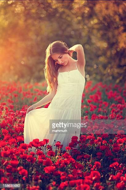 Junge Schönheit in Mohn Feld bei Sonnenuntergang