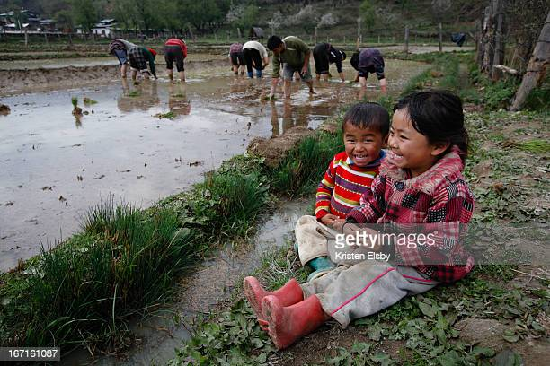 Young Bhutanese brother and sister laugh together as their grandparents and family members plant rice in their local rice paddies in central Bhutan.