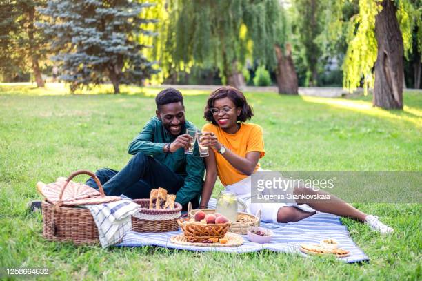 young black couple on picnic in the park. - natural parkland stock pictures, royalty-free photos & images