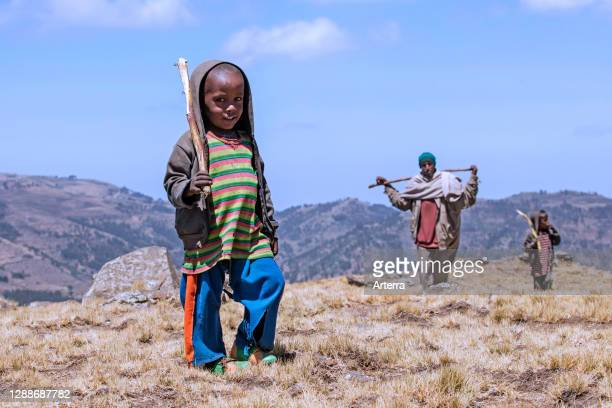 Young black herdsman with two children herding cattle in the mountains / hills, Lasta Amhara Region, Ethiopia, Africa.