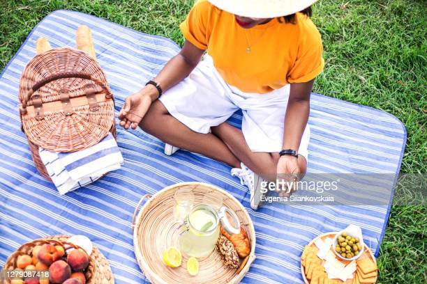 young black woman on picnic in the park. - picnic blanket stock pictures, royalty-free photos & images