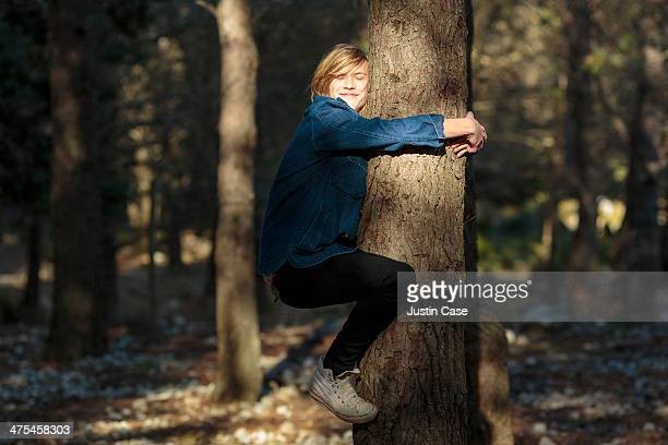 young blond boy hugging a tree in the sunlight - tree hugging stock pictures, royalty-free photos & images
