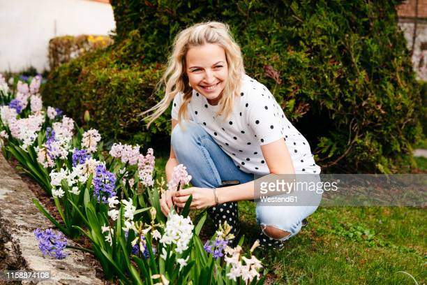 young blonde woman controls hyacinths in her garden - frühling stock-fotos und bilder