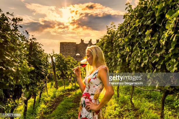 young blonde woman sniffs and drinks a glass of wine watching sunset over vineyards, italy - italia stockfoto's en -beelden