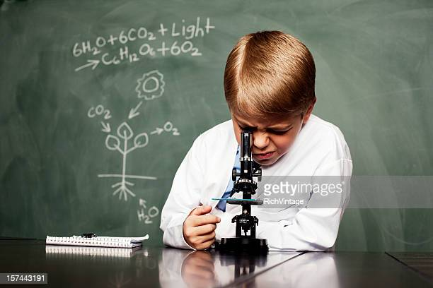 young botanist - photosynthesis stock photos and pictures
