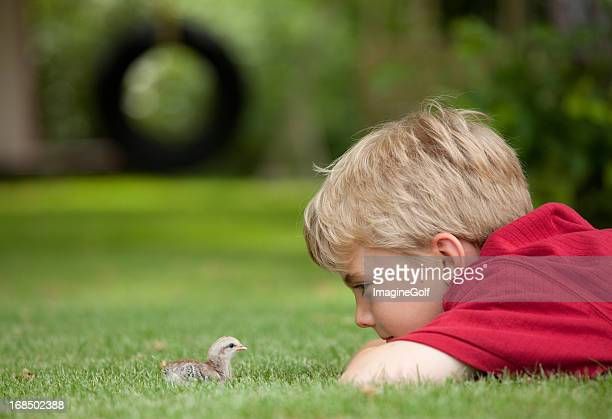 Young Boy and Baby Chick