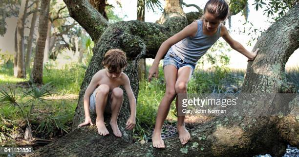 Young boy and girl climbing on fallen tree in garden