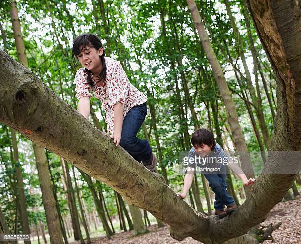 Young boy and girl playing in Forest
