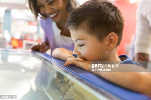 young boy and his grandmother watch 3d printer - science photo library stock pictures, royalty-free photos & images