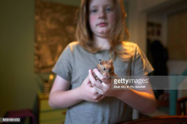 A young boy and his pet Hamster