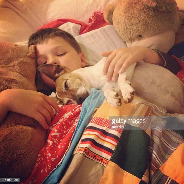 Young boy asleep with his dog and teddy bear
