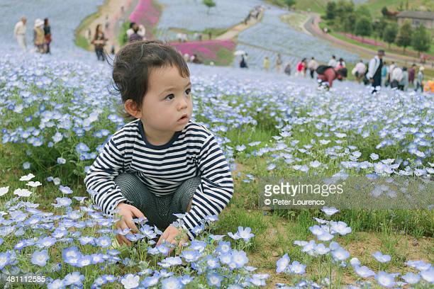Young boy at a flower park