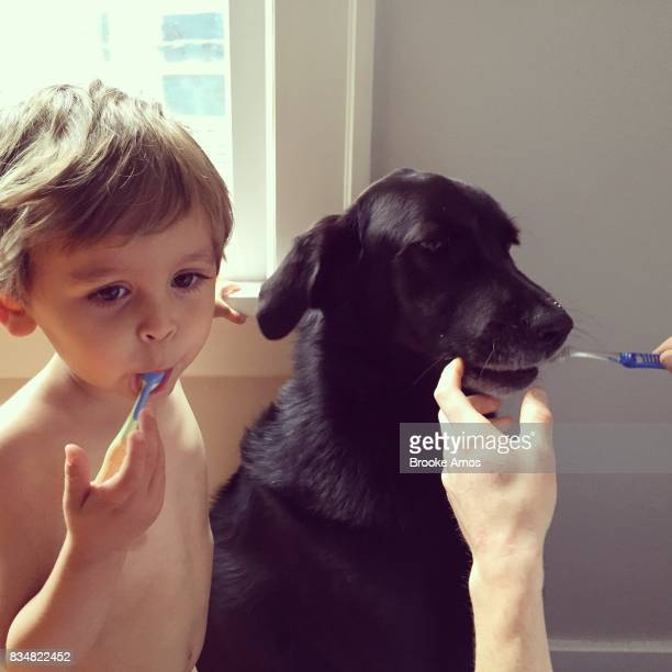 Young boy brushing teeth with dog