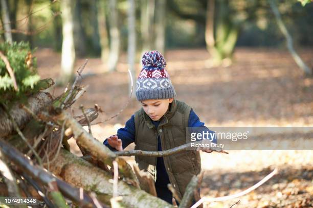 Young boy building a den in the woods