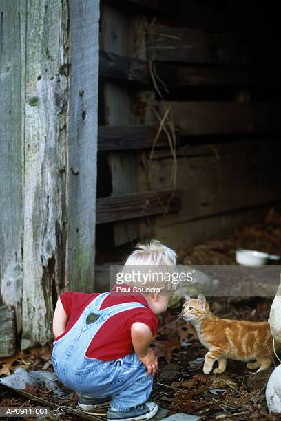 Young boy (1-3) crouching to look at kitten on farm