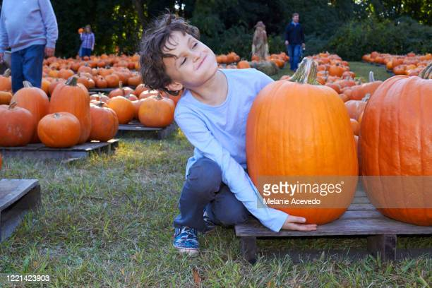 young boy curly brown short hair brown eyes holding pumpkin sitting on wooden stand on the ground