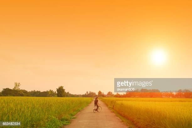 young boy cycling on open road near rice field