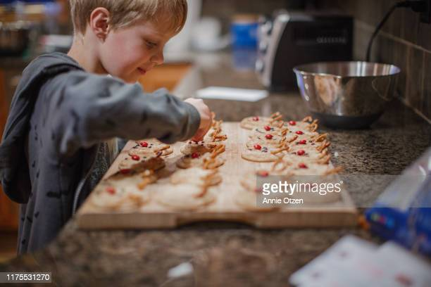 Young Boy Decorating Christmas Cookies