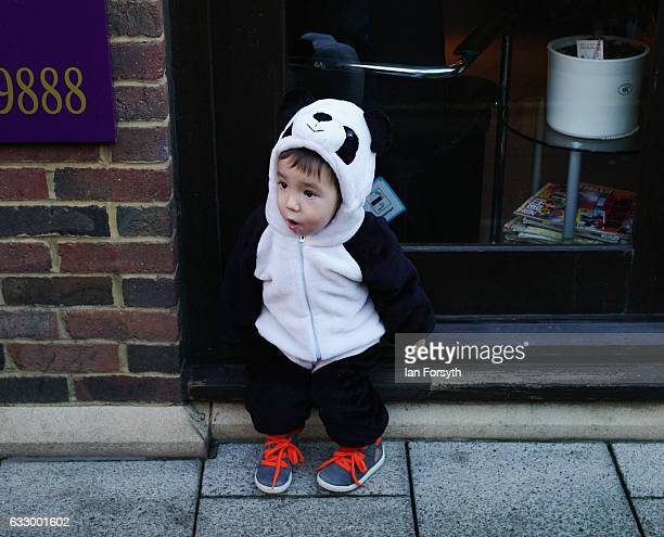 A young boy dressed as a panda watches events during the Chinese New Year celebrations to mark The Year of the Rooster on January 29 2017 in...