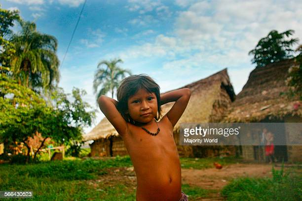 A young boy from the ethnic Yanomami community near Mavaca river The Yanomami are an ancient indigenous people living along the BrazilianVenezuelan...