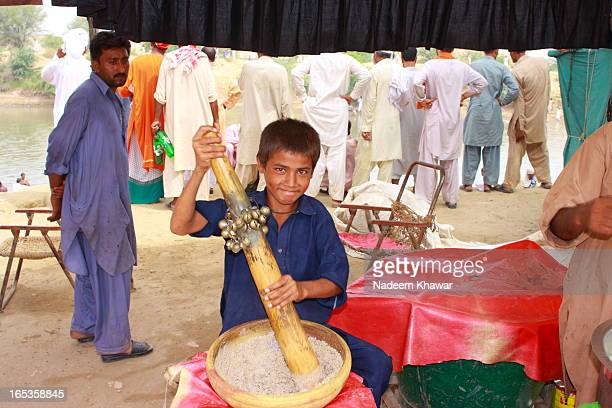 CONTENT] A young boy grinding the smaal beans of Khaskhas and almonds to make traditional drink called Sardai at the eve of Lal Shahbaz Qalandars Urs...