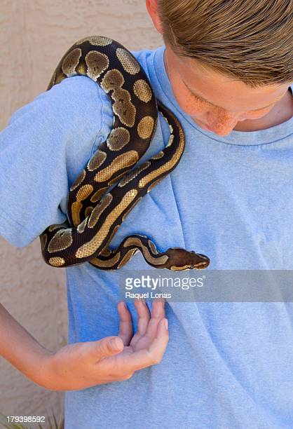 Young  boy holding a pet ball python