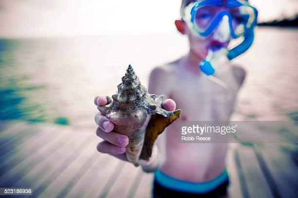 a young boy holding a seashell while wearing a snorkel mask - robb reece 個照片及圖片檔