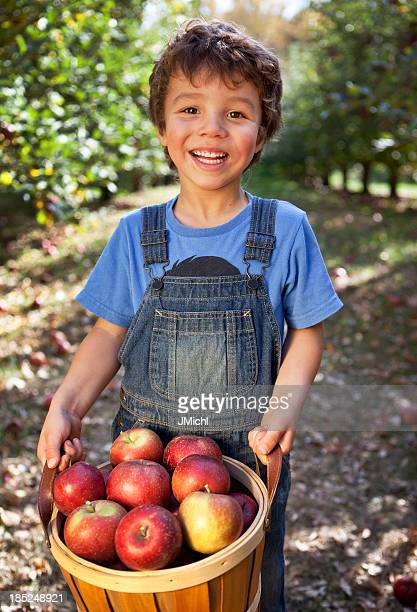 Young boy holding basket of freshly picked Minnesota apples