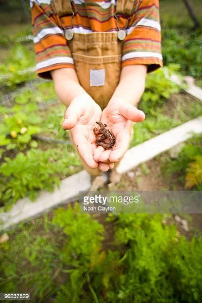 Young boy holding earthworm.