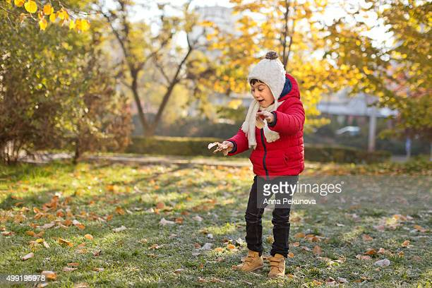 Young boy holding frozen leaves looking down
