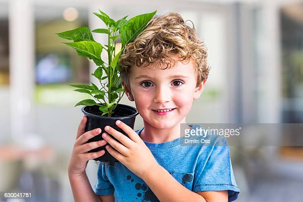 Young boy holding green pot plant