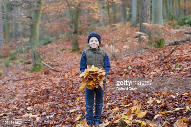 Young boy holding leaves in Autumnal woodland