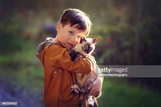 young boy holding siamese cat outside - siamese cat stock pictures, royalty-free photos & images