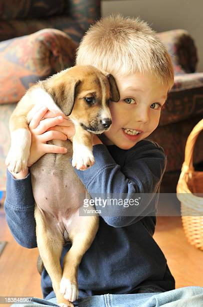 a young boy in a blue jumper holding a puppy and smiling - australian shepherd puppies stock pictures, royalty-free photos & images