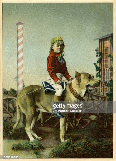 Young boy in full riding gear sits atop large dog, circa 1898.