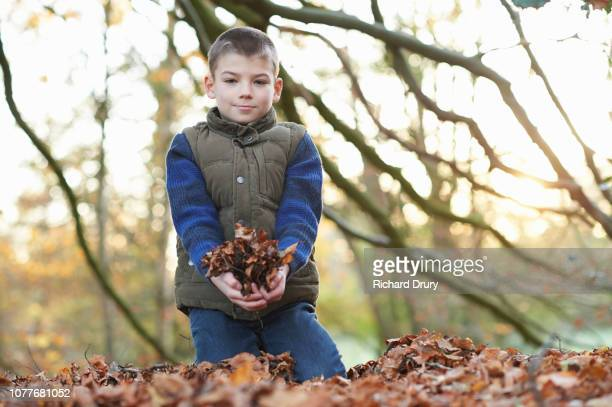 Young boy in kneeling in the leaves in Autumnal woodland