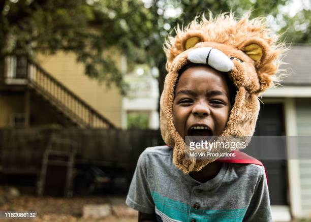 young boy (6 yrs) in lion costume playing in backyard - children only stock pictures, royalty-free photos & images
