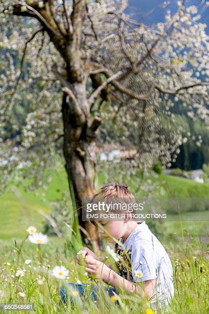 young boy is chilling between flowers