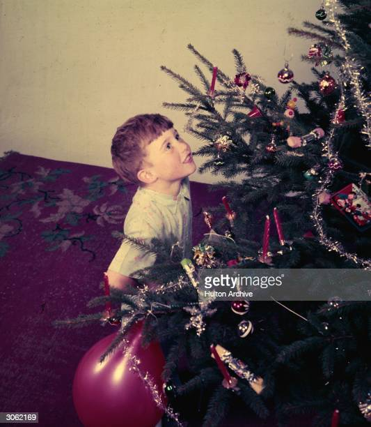 A young boy looking at a christmas tree Original Publication Picture Post 7445 Child With Xmas Tree pub 1954