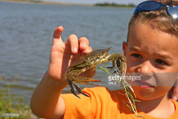 Young boy looking at blue crab in his hand